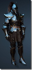 bdo-clead-warrior-costume