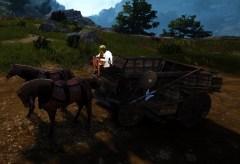 bdo-farm-wagon-no-parts-5