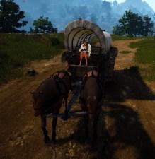 bdo-farm-wagon-with-parts-4