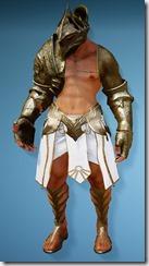 bdo-kibelius-berserker-costume