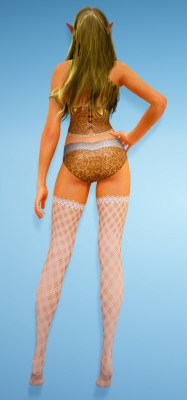 bdo-silk-corset-underwear-3