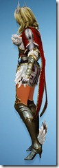 bdo-venslar-long-valkyrie-costume-2