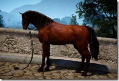 HorseT2