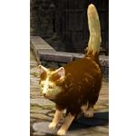 [Tier 3] Striped Cat