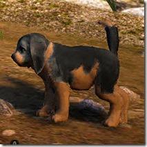 Tier 3 Naughty Dog Side