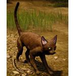 [Tier 3] Thin Cat