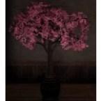 Cherry Blossom Pot