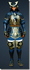 bdo-protection-ninja-costume