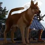 [Tier 3] Shepherd