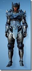 bdo-aker-guard-costume