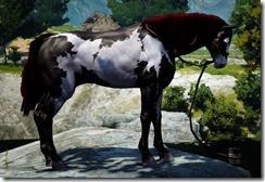 bdo-tier-5-horse