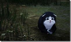 skunkcat3