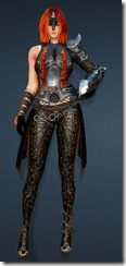 bdo-clead-costume-armor-weapon