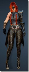 bdo-clead-costume-armor