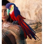[Tier 3] Macaw