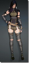 bdo-strength-of-heve-kunoichi-armor