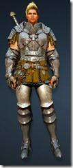 bdo-warrior-evergart-costume-no-helm