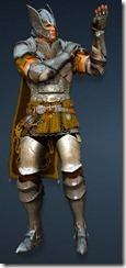 bdo-warrior-evergart-costume