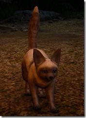 tier3-desert-fox-appearance-change-gray-4-6-v.myst-front