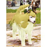 [Tier 3] Snow Wolf Dog