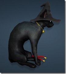 bdo-charlotte-witch-hat-2