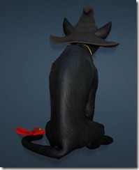 bdo-charlotte-witch-hat-3
