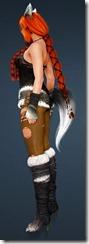 bdo-gray-fox-costume-valkyrie-2