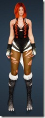 bdo-gray-fox-costume-valkyrie-4