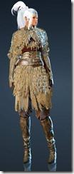 bdo-desert-camouflage-dark-knight-costume-7