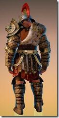 bdo-iron-projection-berserker-costume-8