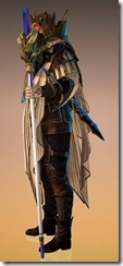bdo-memory-of-sage-wizard-costume-2
