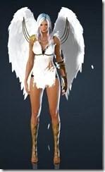 bdo-kibelius-dark-knight-costume-10