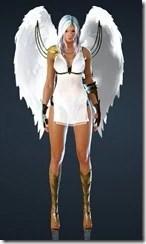 bdo-kibelius-dark-knight-costume-9