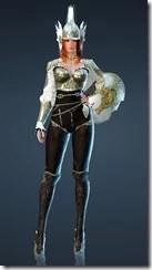 bdo-arendo-valkyrie-costume