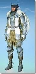 bdo-crown-eagle-costume-musa-10