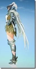 bdo-crown-eagle-costume-sorc-2