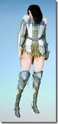 bdo-crown-eagle-costume-sorc-9