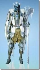 bdo-crown-eagle-costume-wizard-10
