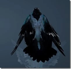 Crow Back