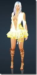 bdo-stella-dark-knight-costume-9