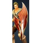 [Warrior] Doomsday Shield