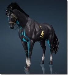 Bellucian Horse Gear