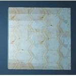Great Sands Coral Floor