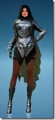 Sorceress Shadow Chaser No Hood