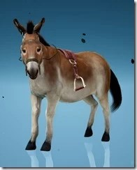 Donkey Clip-Clop Gear Stirrups