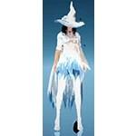 [Sorceress] Jolly Winter Dream