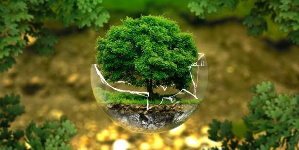 A Fidelity bemutatja egyedi fenntarthatósági minősítő mutatóját