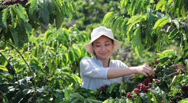 A modern kávéivás az élményről és a fenntarthatóságról szól