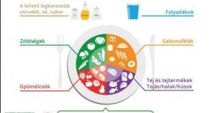 A fenntarthatóság jegyében újul meg a hazai táplálkozási ajánlás, az OKOSTÁNYÉR
