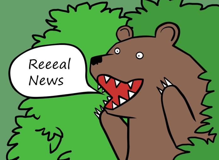 Bear screaming fake news